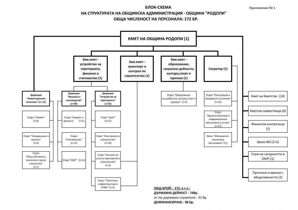Структура – Община РОДОПИ